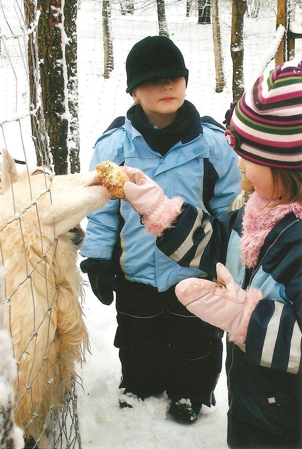 Spiele im Winterwald  Kita Abraxas eV